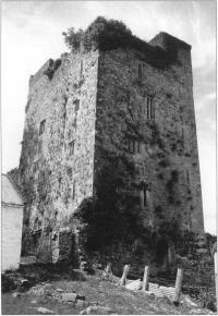Bourchiers' Castle, Lough Gur, County Limerick,an elegant fifteenth century Irish Gothic tower house.
