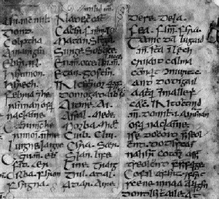 A list of the sons of Mí­l Espáine (left-hand column) from the Book of Leinster's copy of Lebor Gábála, TCD MS 1339. (Reproduced by permission of the Board of Trinity College, Dublin)