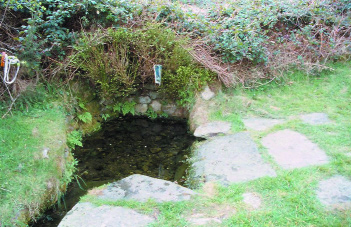 Toberpatrick near Tinahely, Co. Wicklow-wells such as this testify to the diffusion and continuity of Patrick's cult.