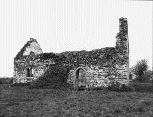 Parsonstown church, County Louth. (OPW)