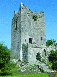 Clonony Castle, a tower-house that was inhabited by Matthew de Renzy, a German-born merchant, in the years preceding the 1620 plantation of Delvin MacCoughlan.