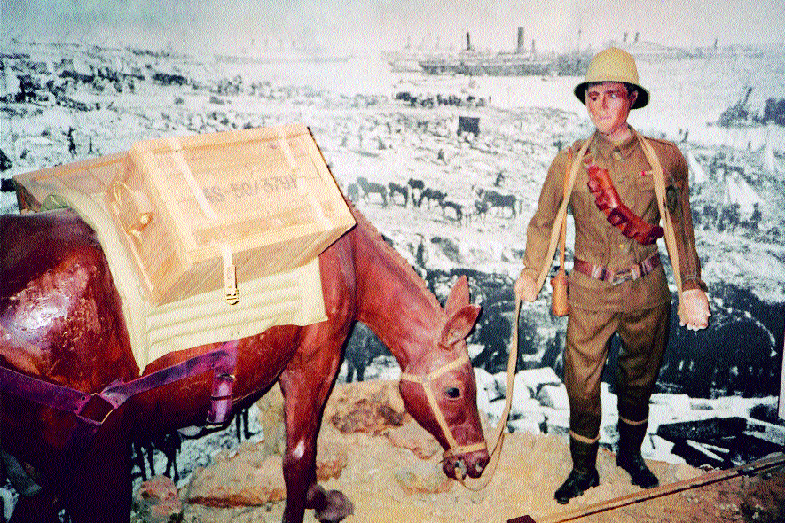 An exhibit on the Zion Mule Corps in the Jewish Legion's Museum, Avichayil, Israel.