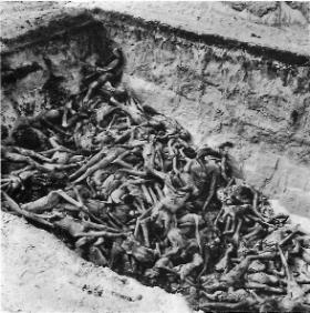 A mass grave in Bergen-Belsen concentration camp shortly after liberation in April 1945. Aiséirghe had its greatest electoral success at the precise moment when such newsreel footage was being displayed on cinema screens across Ireland. In July 1945 Aiséirghe's film-critic, described such footage as 'hate-mongering' fabrication. (wikimedia)