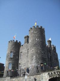 Enniscorthy Castle—used to house the unofficial Wexford county museum. The visitor can now appreciate the castle and its own history.