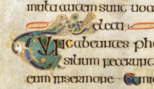 Above: It would be a huge mistake to imagine that Irish monks of the eighth century were incapable of laughter or amusement. In this case an initial T is formed by an elasticated man, who lethargically stretches out his arms to catch a passing bird, evidently a peacock. The passage (from St Matthew's Gospel) describes how the Pharisees took council as to how they might ensnare or seize Christ. As the peacock was seen as a symbol of Christ, this is a witty response to the words of the text. (The Book of Kells, folio 96r, © The Board of Trinity College Dublin 2013)