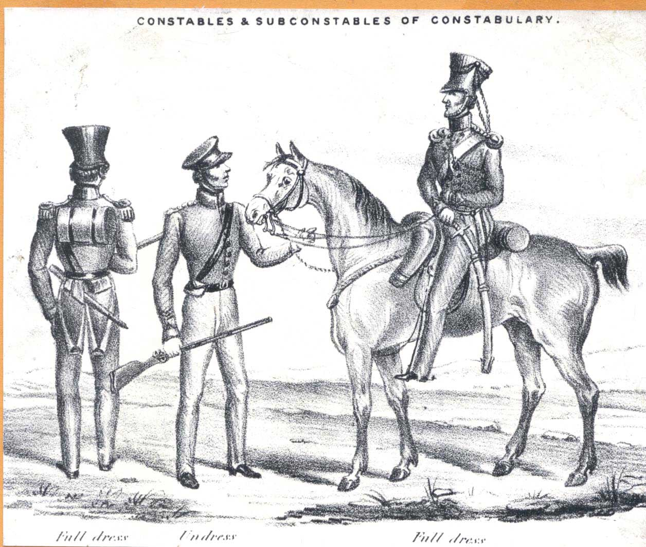 In the 1841 census members of the constabulary were delegated