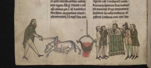 Another example of medieval hyperbole—Gerald of Wales claimed that a Gaelic king mated with, and then ate, a horse. (NLI)