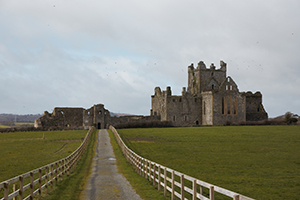 Above: Dunbrody Abbey, Co. Wexford, where pilgrims would have been able to claim hospitality.